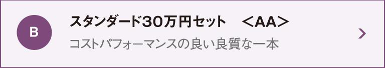 スタンダード30万円セットAA